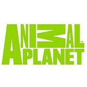 BrandEBook.com-Animal_Planet_2008_International_Off-Air_Brand_Guidelines-0001