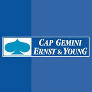 BrandEBook_com_cap_gemini_ernst_and_young_brand_book_-1
