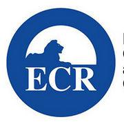 BrandEBook_com_european_conservatives_and_reformists_group_graphic_standards_manual_-1