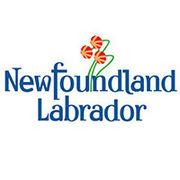 BrandEBook_com_new_found_land_labrador_graphic_standards_01