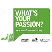 BrandEBook_com_year_of_the_volunteer_identity_guidelines_-1
