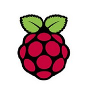 Raspberry Pi Visual Identity Guidel-0